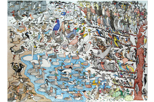 Vogels (Birds in Dutch), por David Barth (10 anos), em 2008